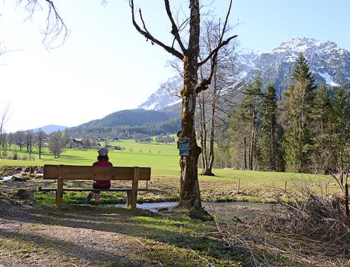 Frau betrachtet Dachstein am Hofrat Gruber Weg, Teil des Panoramawegs in Ramsau am Dachstein