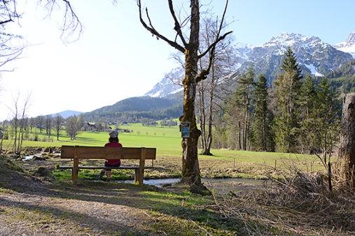 Hofrat Gruber Weg