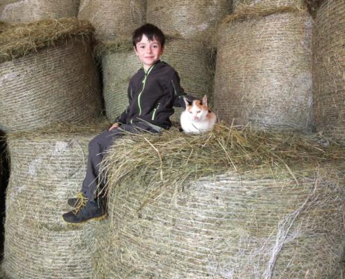 Kind mit Katze im Heu beim Urlaub am Bauernhof in Ramsau am Dachstein