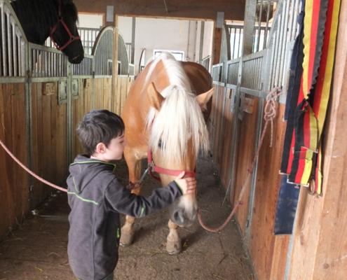 Kind streichelt Pferd im Stall eines Bauernhofs in Ramsau am Dachstein