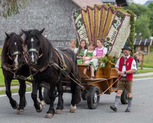 Geschmückte Pferdekutsche mit Harmonika aus Blumen