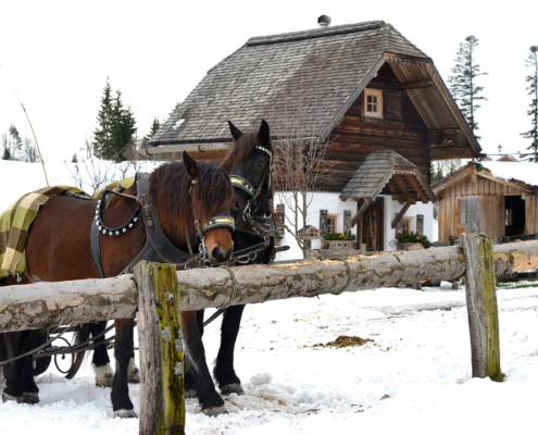 Pferdeschlitten am Adventmarkt am Ederhof